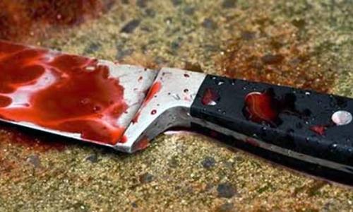 Καλλιθέα - Μητέρα μαχαίρωσε την κόρη της μπροστά στα εγγόνια της...